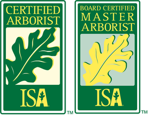 dincher-certifications