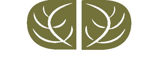 Dincher & Dincher