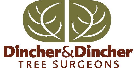 dincher-logo-vertical